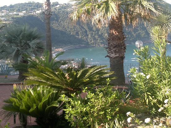 Hotel Terme Royal Palm: Questo quello che vedrete dalle vostre camere