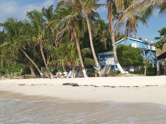 Cocoplum Beach Hotel Playa Del