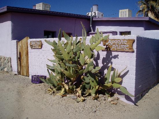 29 Palms Inn: Apache Plume, our little cabin