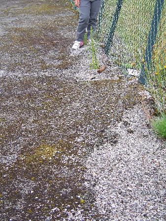 Nedde, Francia: terrain de tennis