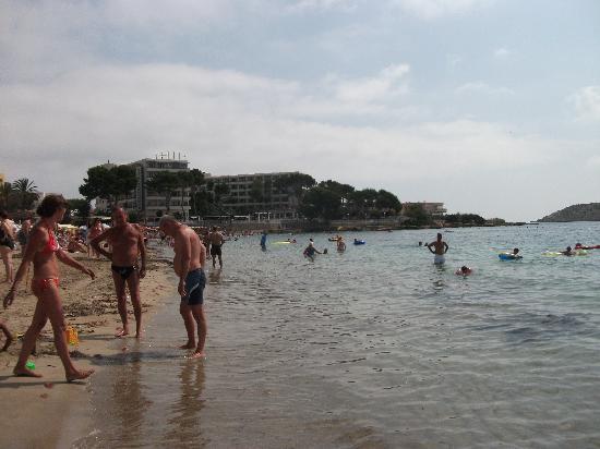 Anfora Playa: Es Cana beach