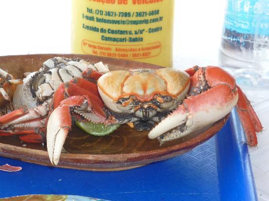 B&B Bela Bahia: Good food!