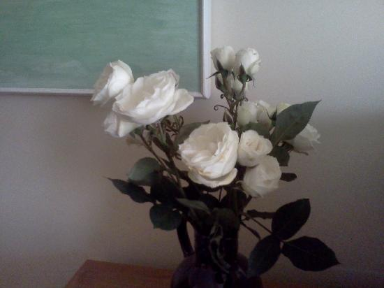 Just for You B&B: roses in our room was such a nice touch