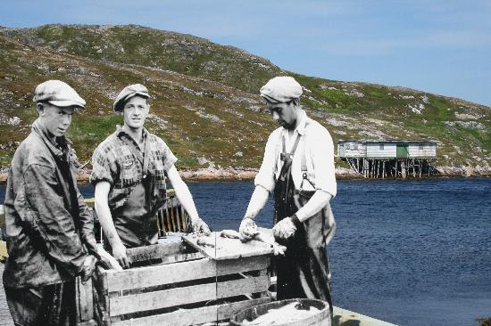 Battle Harbour Heritage Properties: Battle Harbour Historic Trust operates a restored fishing community - stay and explore