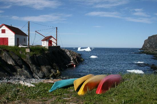 Quirpon Lighthouse Inn: Kayak launch and paddle among the bergs (taken July 2011)