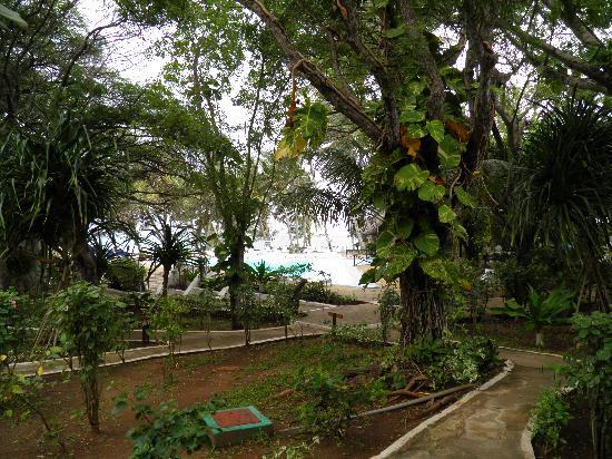 Baobab Sea Lodge : gepflegte Anlagen