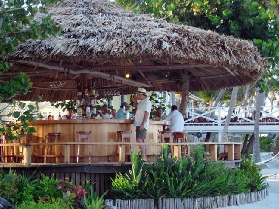 Turneffe Island Resort: The pool bar