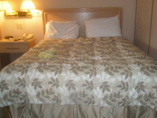 Rodeway Inn Fallsview: L'hotel est propre et sécuritaire.