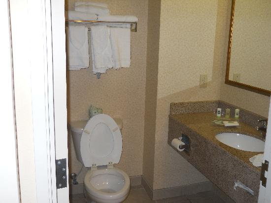 Country Inn & Suites By Carlson, Augusta at I-20: Bathroom vanity area