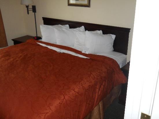 Country Inn & Suites By Carlson, Augusta at I-20: King Suite With Separate Sitting Room