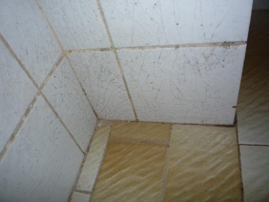 Alibi B14 Rooms : Cracked tiles