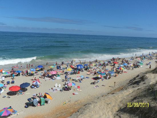 Wellfleet, MA: Great beach, cold water :-)