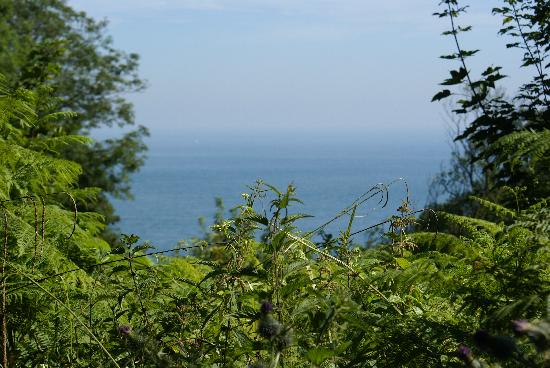 Dunnose Magna: The view from the coastal path