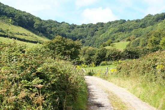 Dunnose Magna: The surrounding valley and countryside