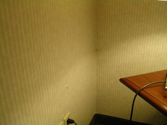 Comfort Inn Concord: the dirty walls
