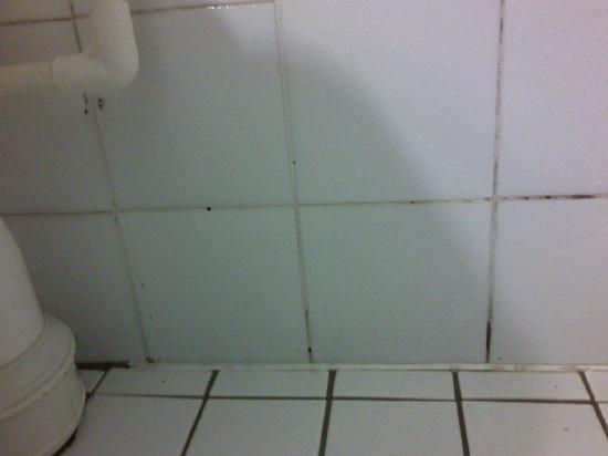 Parklane Motor Lodge: The tiles need a good scrub.