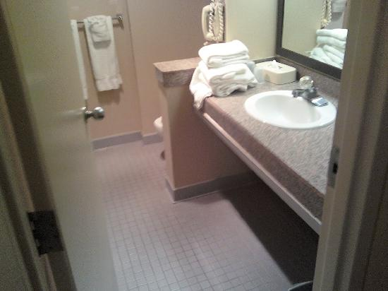 Inn of King of Prussia: roomy bathroom!