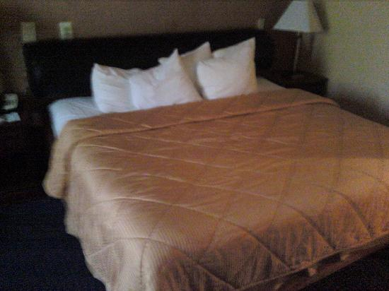 Inn of King of Prussia: nice bed with the headboard pad!