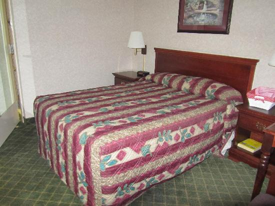 Super 8 Ruther Glen Kings Dominion Area: room with one double-bed