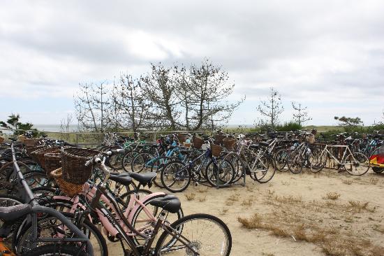 Surfside Beach: Bike parking