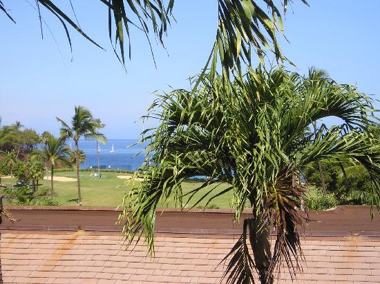 Maui Eldorado: Partial ocean view