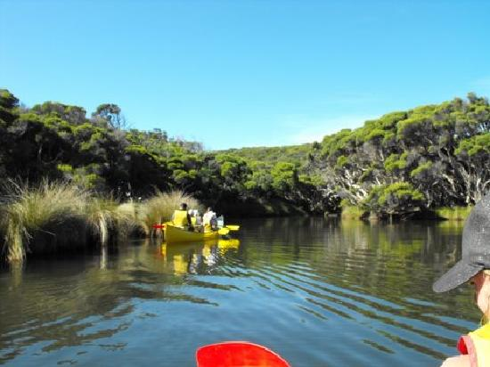 Sandy Bay Holiday Park: Canoe and wine tours booked through our office