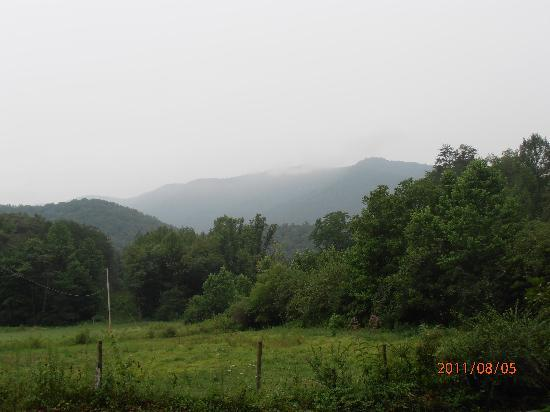 Henson Cove Place B&B: Beautiful views of the mountains.