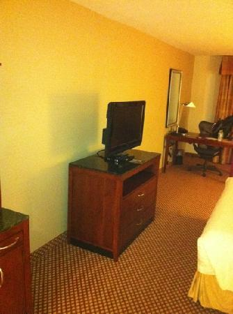 Hilton Garden Inn Naperville/Warrenville: sparsely furnished and tiny tv