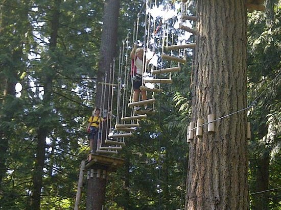 Maple Ridge, Canada: Up in the trees with my very patient Monkido guide