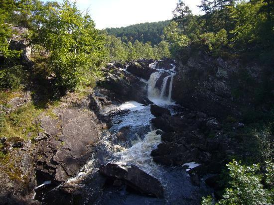 Contin, UK: The Rogie Falls - near to the hotel