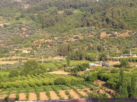 Rebetika Hotel: The nearby Sirince Village