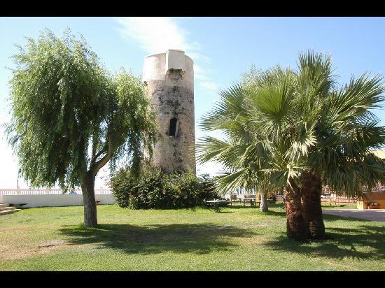 Jardin photo de best western hotel salobrena salobrena for Best western jardin