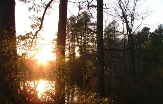 Killens Pond State Park: Hiking at Sunset