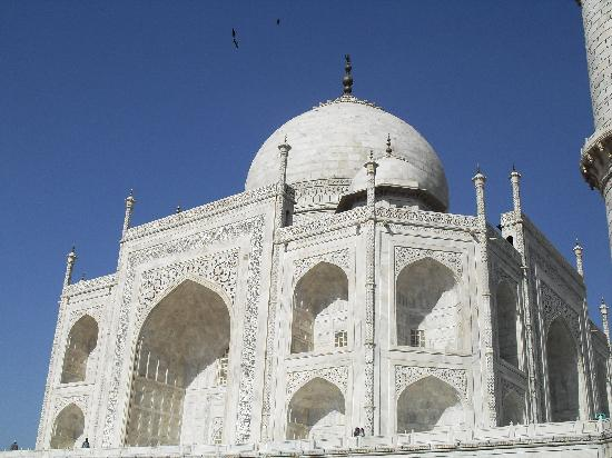 Tac Mahal: Taj