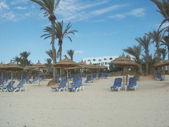 Hotel Palm Azur: Blick vom Strand auf das Hotel