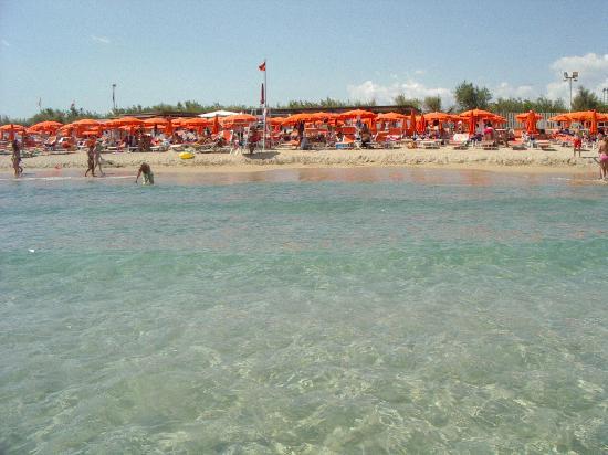 Particolare piscina picture of oasi le dune resort torre canne tripadvisor - Piscina seven savignano ...