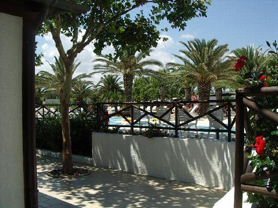 Vista spiaggia picture of oasi le dune resort torre canne tripadvisor - Piscina seven savignano ...
