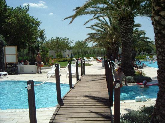 Particolare piscina foto di oasi le dune resort torre canne tripadvisor - Piscina seven savignano ...