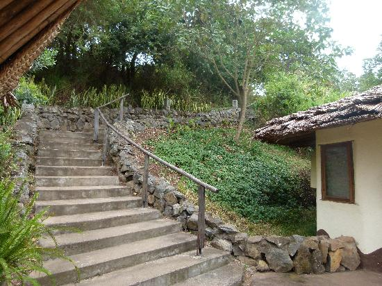 Kigongoni Lodge: Steps up/down to rooms 1 and 2