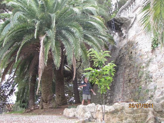 La Pigna : in the park