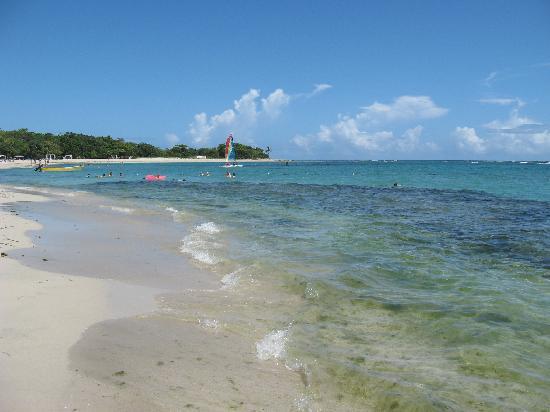 Iberostar Costa Dorada : nice clear water
