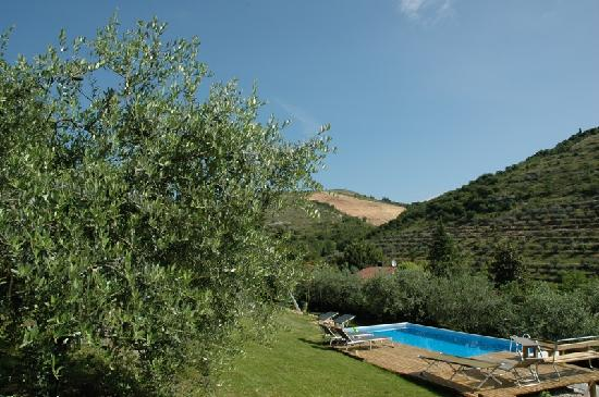 Montericco Bed&Breakfast: swimming pool