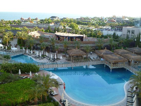 فندق رويال وينجس: pool