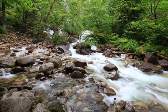 Riverside Resort & Campground: Little Qualicum River