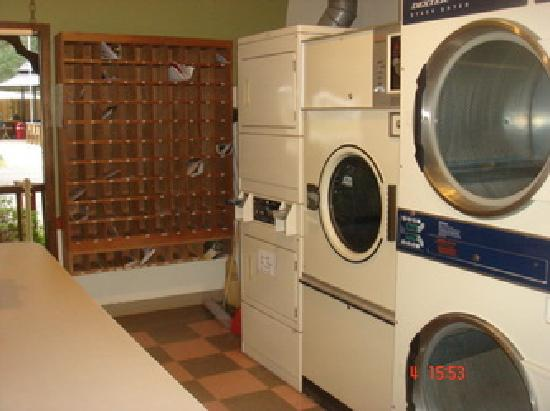 Wildwood, FL: Dryers