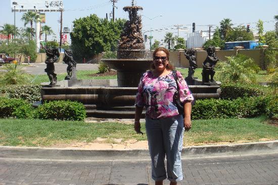 Araiza Mexicali: at check out