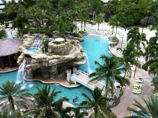 Pool Picture Of Seminole Hard Rock Hotel Hollywood