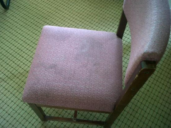 Kingston Inn & Suites: Furniture/Towels were stained