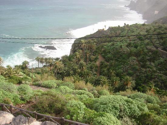 Hotel Rural Residencia San Pedro: Ausblick in Richtung NordostenTeneriffas, auf den anliegenden Wanderweg durch die Bananen-Planta