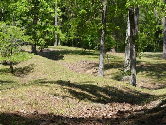 Rivers Bridge State Historic Site: battlefield